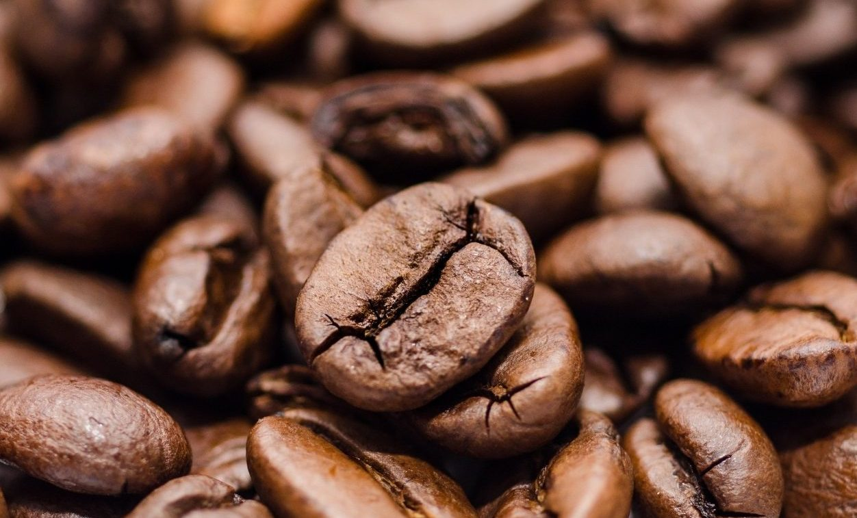 columbian coffee tour by deluxe kosher tour